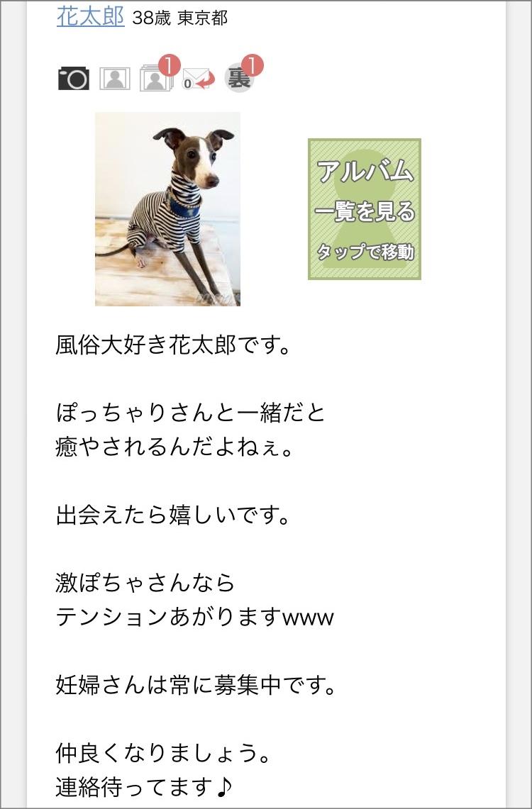 PCMAX ぽっちゃり8